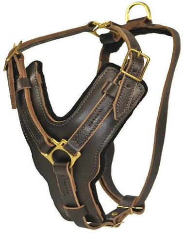 Dean and Tyler The Victory With Pull But No Handle Leather Harness DTH10