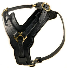Dean and Tyler The Victory No Pull But With Handle Leather Harness DTH10