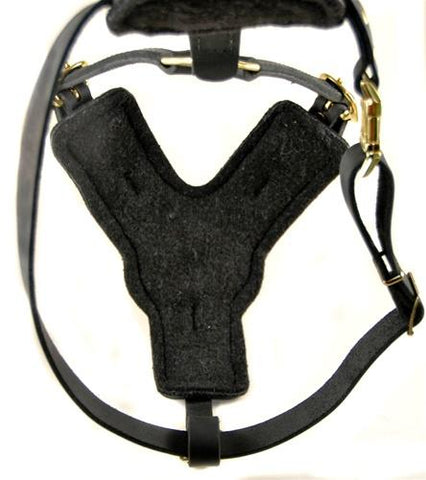 Dean and Tyler The Victory No Pull and Handle Leather Harness DTH10