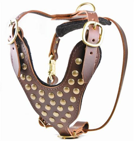 Dean and Tyler Stud Brother Without Handle Leather Harness DTH15-NH