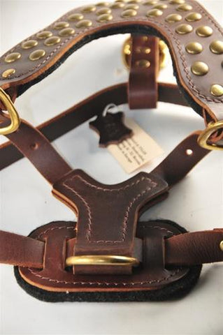 Dean and Tyler Stud Brother With Handle Leather Harness DTH15