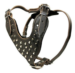 Dean and Tyler Stud Warrior With Handle Leather Harness DTH19