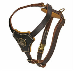 Dean and Tyler Royal Classic Knight Without Pull Leather Harness DTH2ROYAL