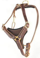 Dean and Tyler Dean's Choice Without Handle Leather Harness DTH3-NH