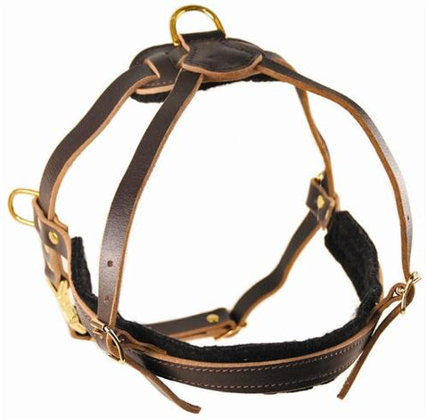 Dean and Tyler The Cowboy With Pull and Handle Leather Harness DTH5