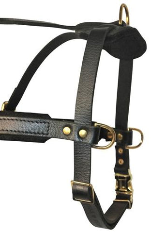 Dean and Tyler The Cowboy Without Pull and Handle Leather Harness DTH5