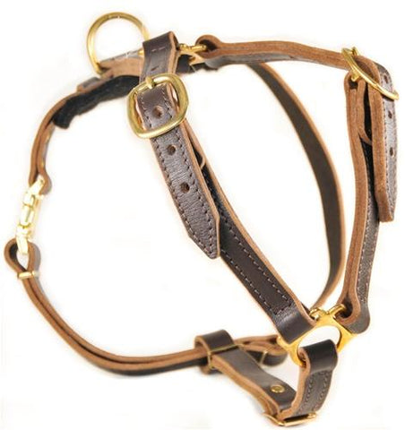 Dean and Tyler Tyler's Choice With Handle Leather Harness DTH7