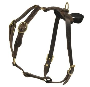 Dean and Tyler Tyler's Choice Without Handle Leather Harness DTH7-NH