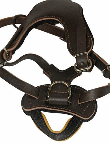 Dean and Tyler D&T Leather Without Handle Basic Leather Harness DTH8B-NH