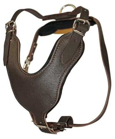 Dean and Tyler D&T Leather With Handle Basic Leather Harness DTH8B