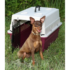 Grain Valley Protective Carrier/Crate for Small Dogs- Airline Approved