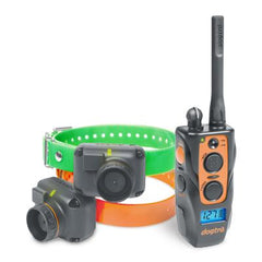 Dogtra 2702T&B Training and Beeper Collar