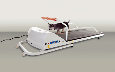 GoPet PR710F Toy-Small Breed Petrun TreadMill