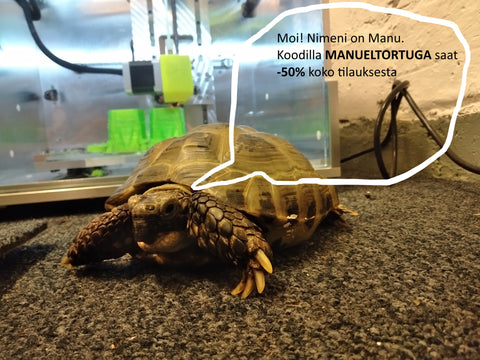 Manu El Tortuga, tuotantovastaava, Tech of Young,