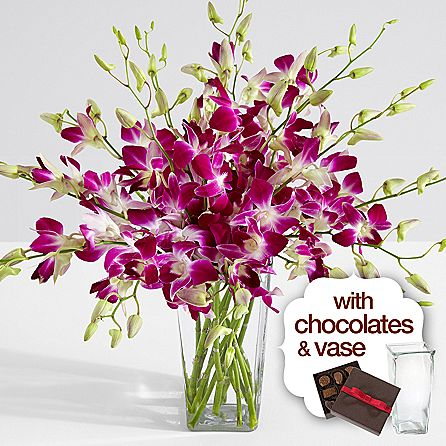 Purple Dendrobium Orchids with Square Vase & Chocolates