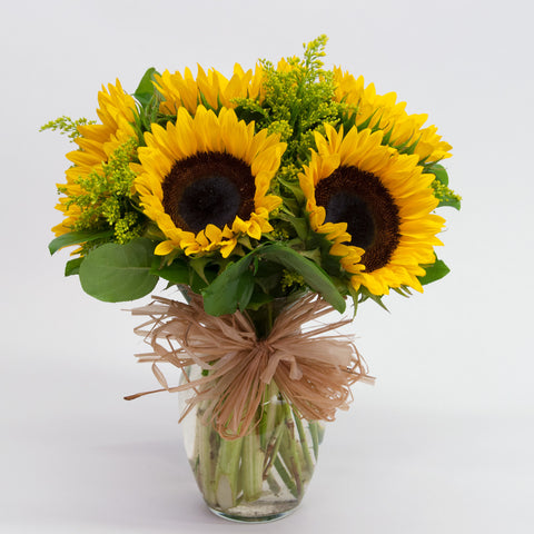 Sunshine Sunflower Set