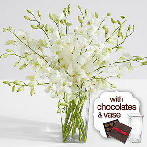 White Dendrobium Orchids with Square Vase & Chocolates