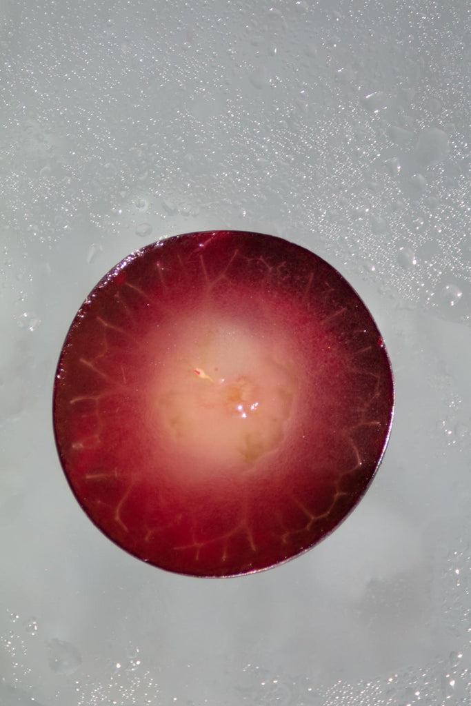 Pinot Noir Wine: closed up look of wine during permentation