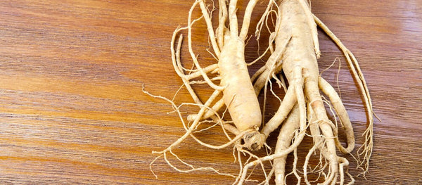 Foods that boost your libido ginseng kiiroo