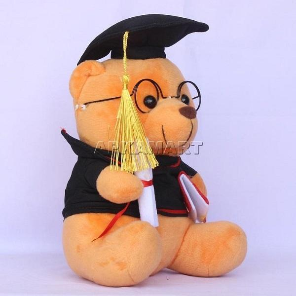 APKAMART Teddy Scholar Soft Toy