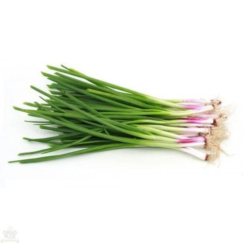 Spring Onions (Bunch of 5)