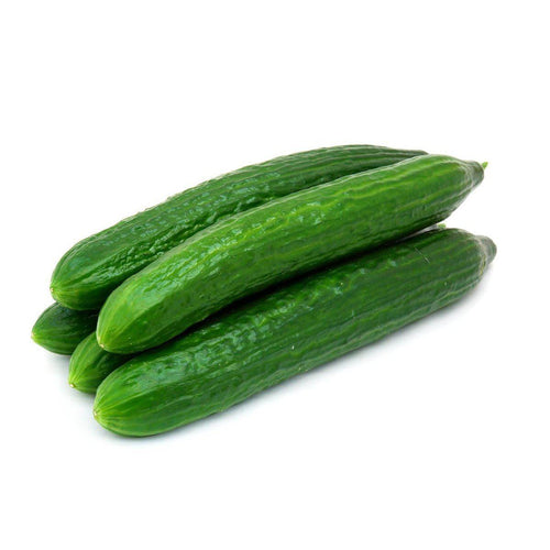 Cucumber Continental (Bag of 15)