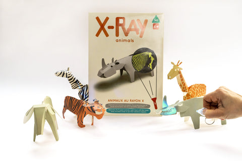 X - Ray animals