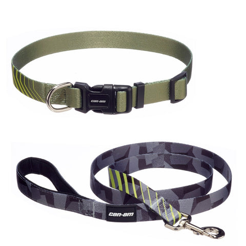 Dog Leash and Collar (large dogs)