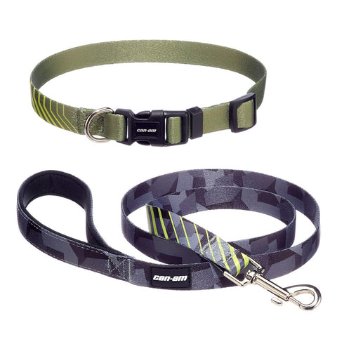 Dog Leash and Collar (small dogs)