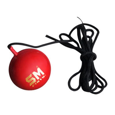 SM Synthetic Ball with Cord