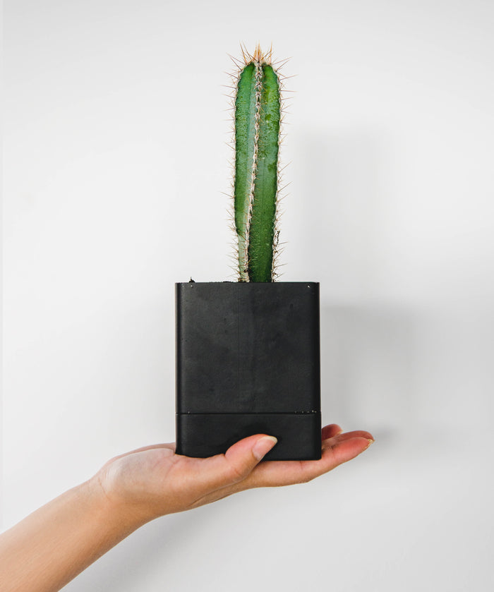 Square Planter - Black