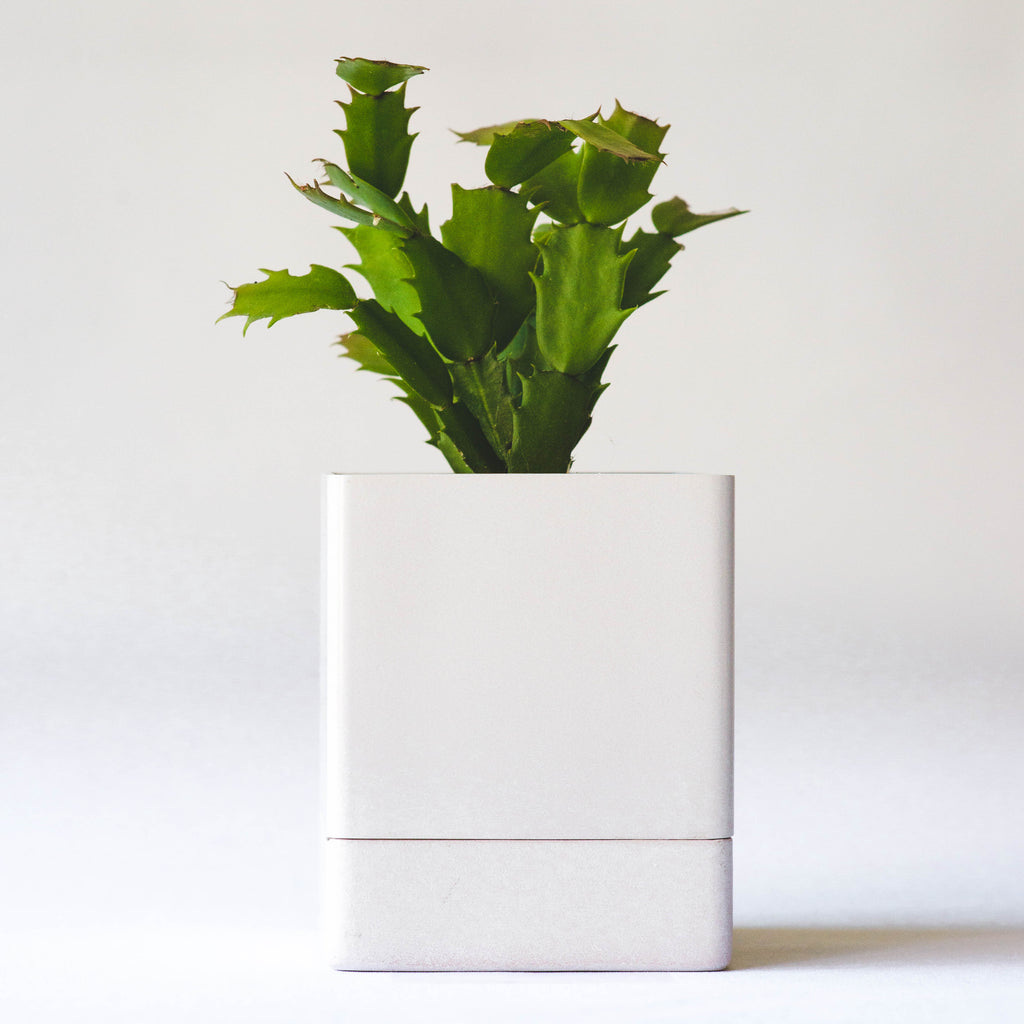 Square Planter - Powder Pink