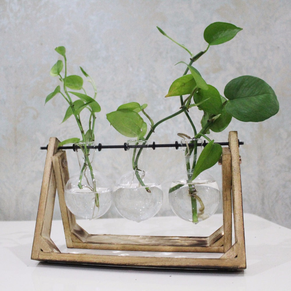 Style Glass Tabletop Plant