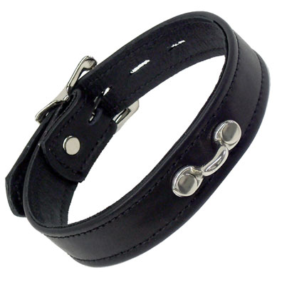 Horizontal Ring Collar