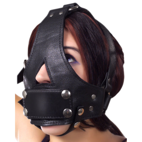 Deluxe Face Harness Gag