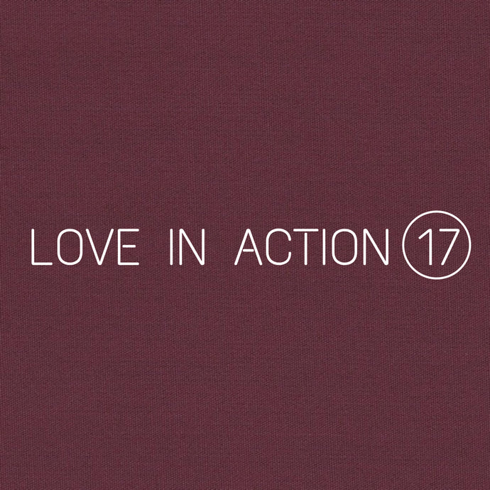 LOVE IN ACTION 17 CARDS