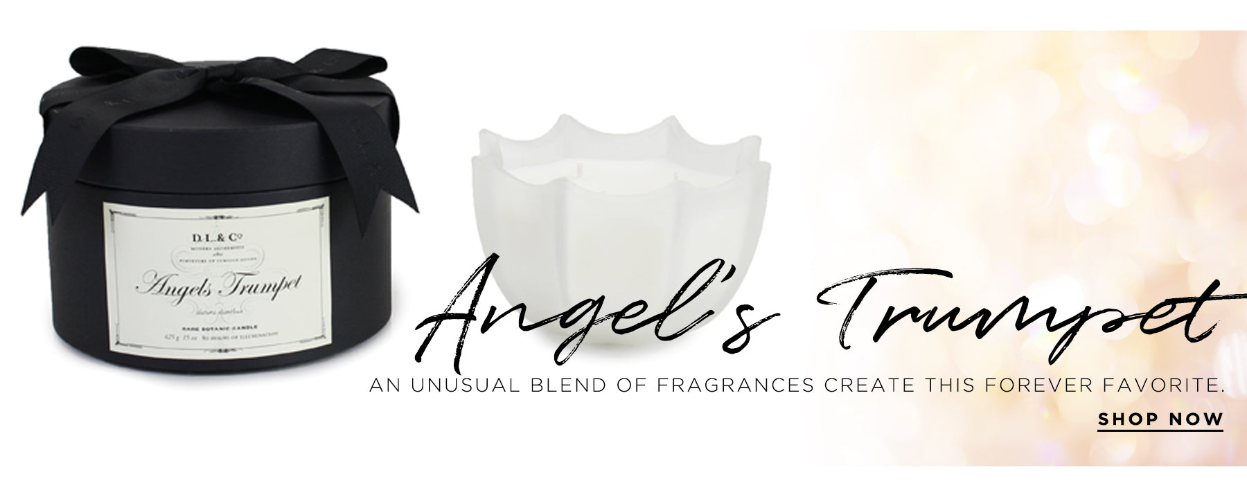 Angel's Trumpet. An unusual blend of fragrances create this forever favorite. Shop Now.