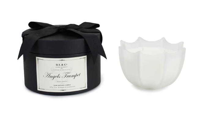 Angel's Trumpet 15oz Scalloped Candle
