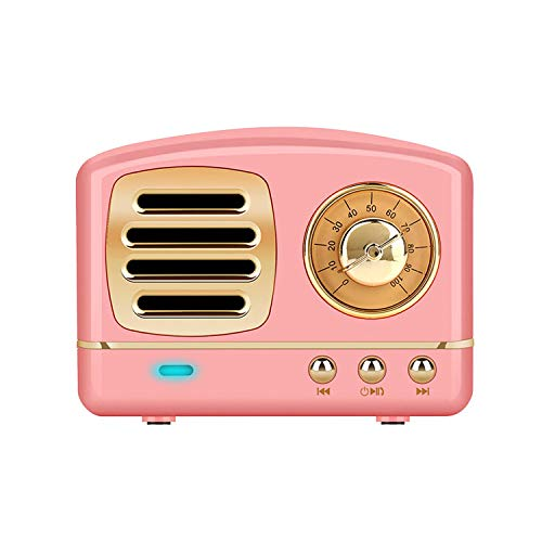 Vintage Retro Radio Stereo Portable Bluetooth Speakers w/Powerful Sound & Alexa Support, Pink