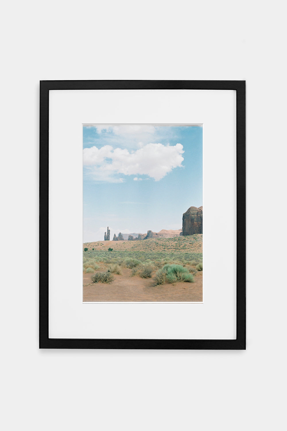 Monument Valley Greenery