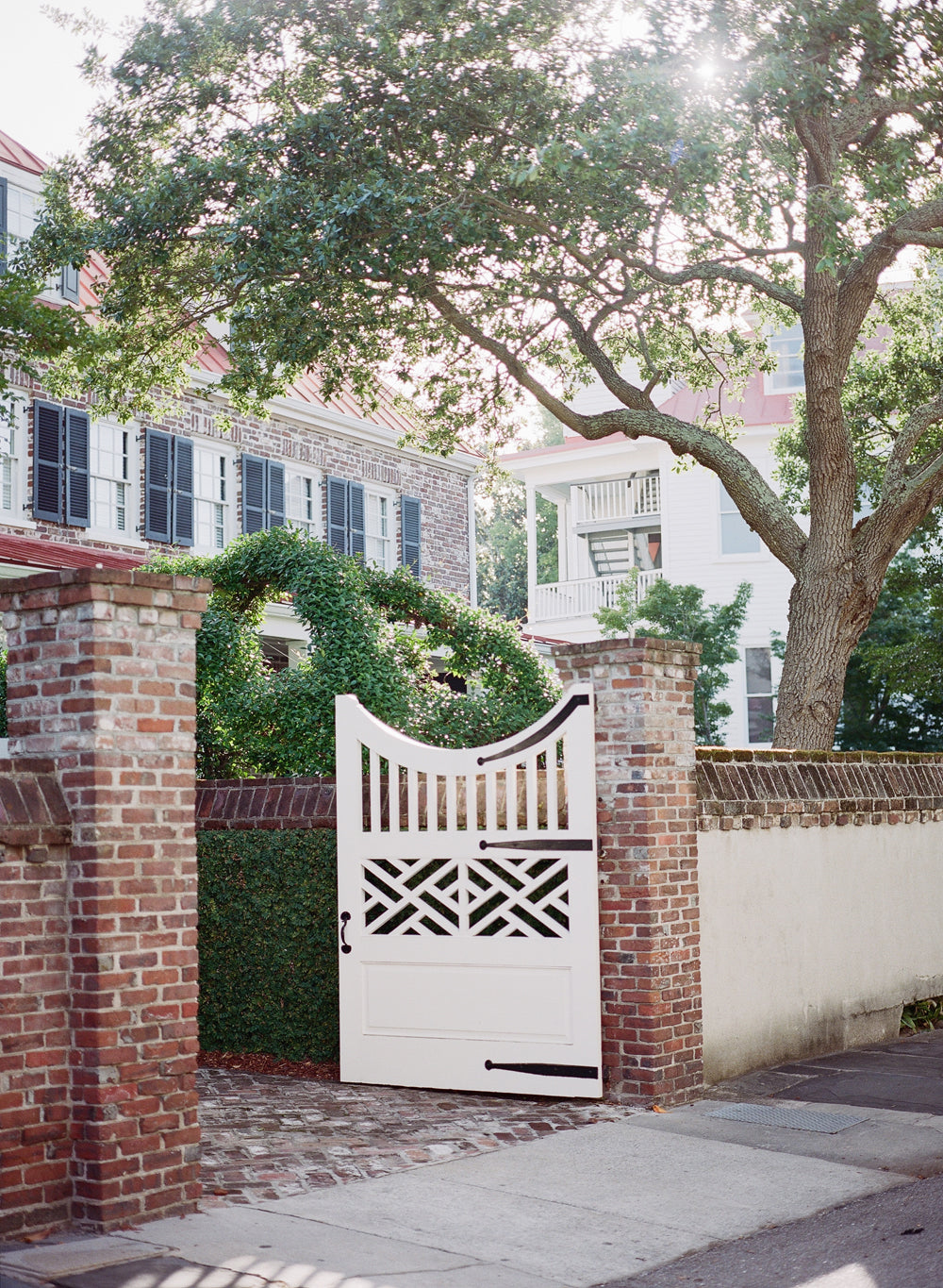 Charleston Morning Light
