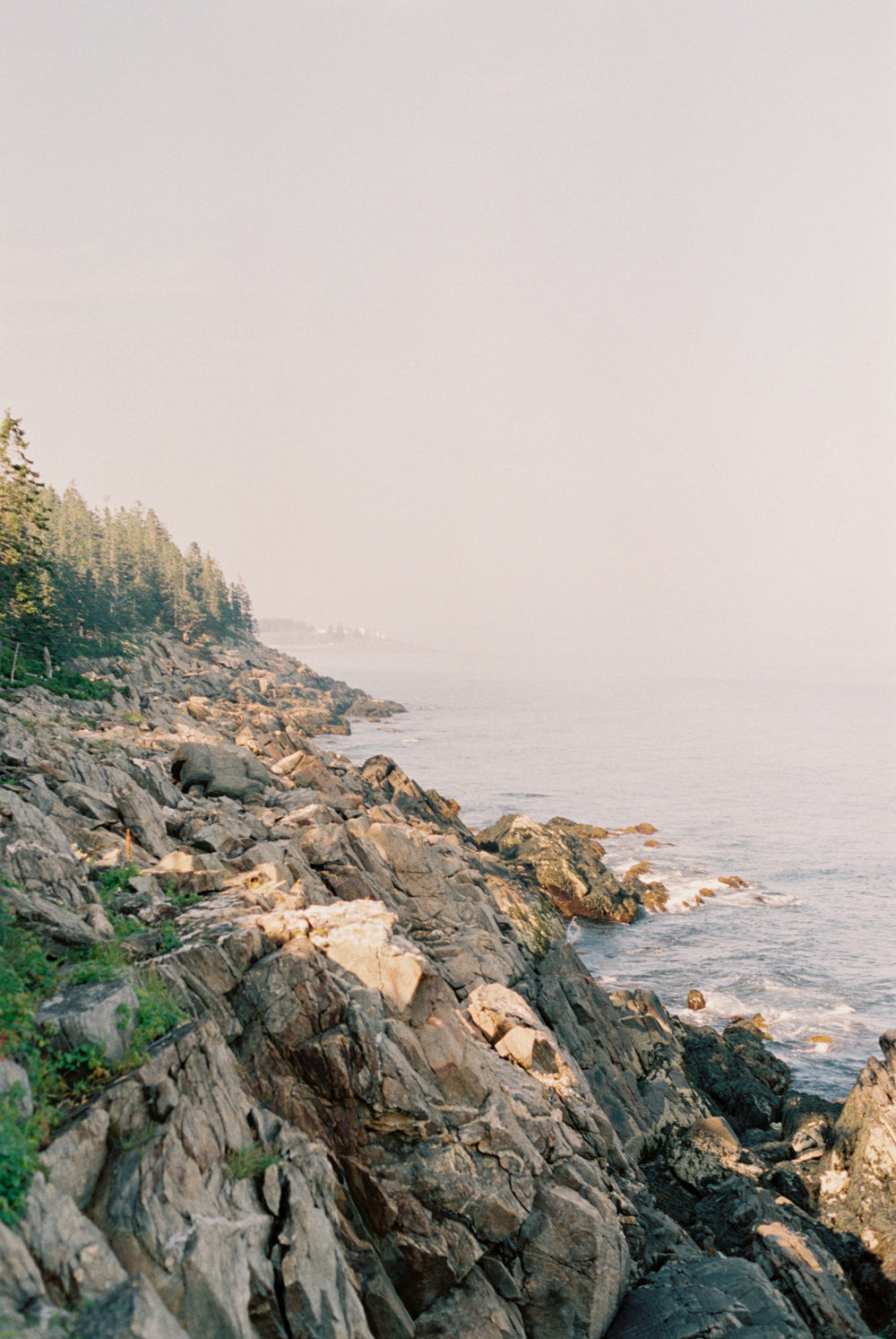 Rocky coast off Tenants Harbor, Portrait