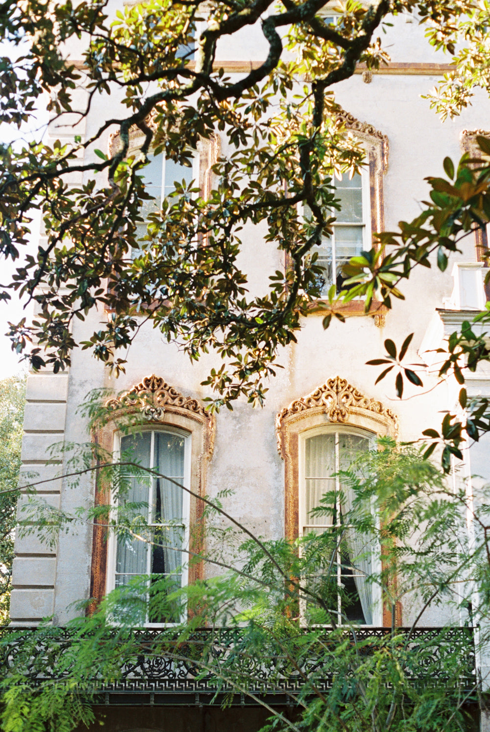 Windows of the Noble Hardee Mansion