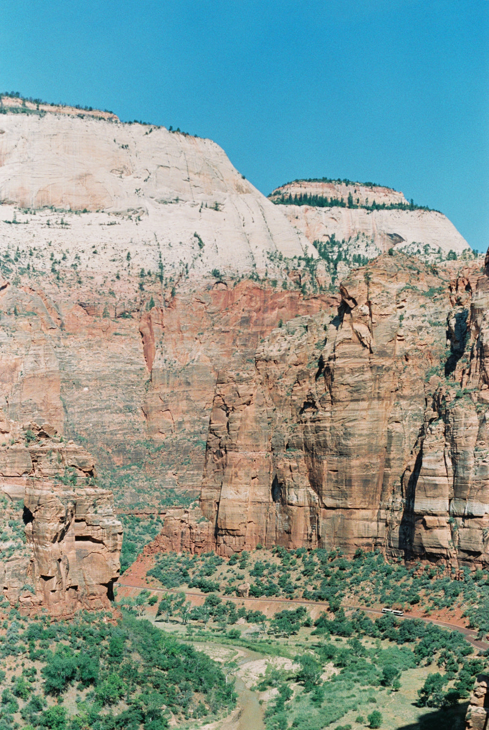 Red Cliff Faces in Zion