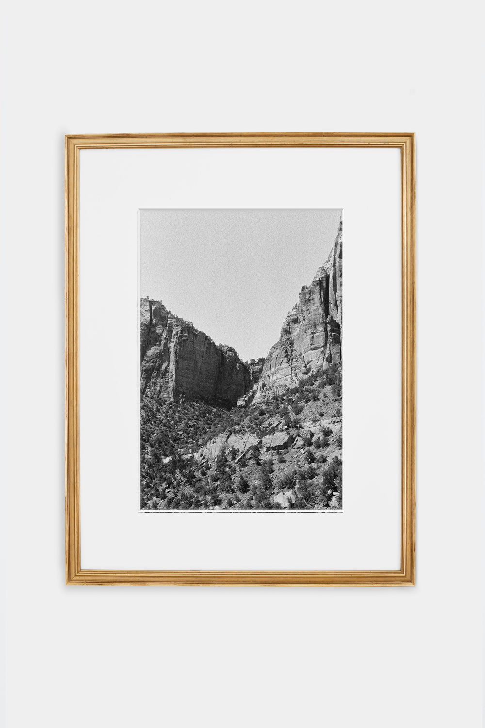 Zion Cliffs in Black and White