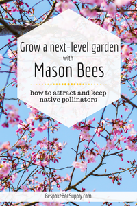 Grow a beautiful garden with Mason Bees, pollinator powerhouses! Bespoke Bee Supply