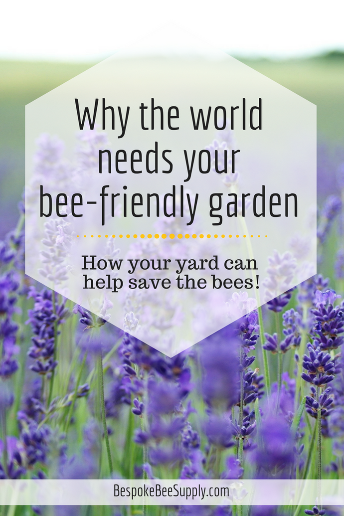 Why the world needs your bee-friendly garden