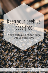 Keep pests out of your beehive