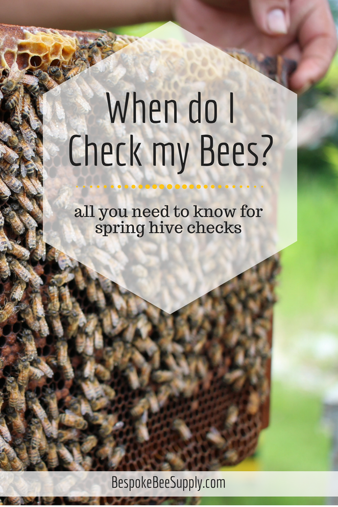 When should I check on my bees? Hive checks in the spring