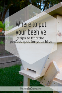 Where to put your beehive: Happy home for honeybees